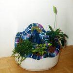 Pflanzen und Wasser – die Oase im Haus mit einem Zimmerbiotop
